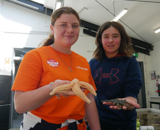 Timaru pupil Nora Quigley (15, left) holds an apricot starfish and Dunedin pupil Emily Potter (14...