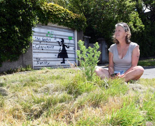 Dunedin resident Stephanie Haworth sits on a grass verge outside her Maori Hill home, which was...