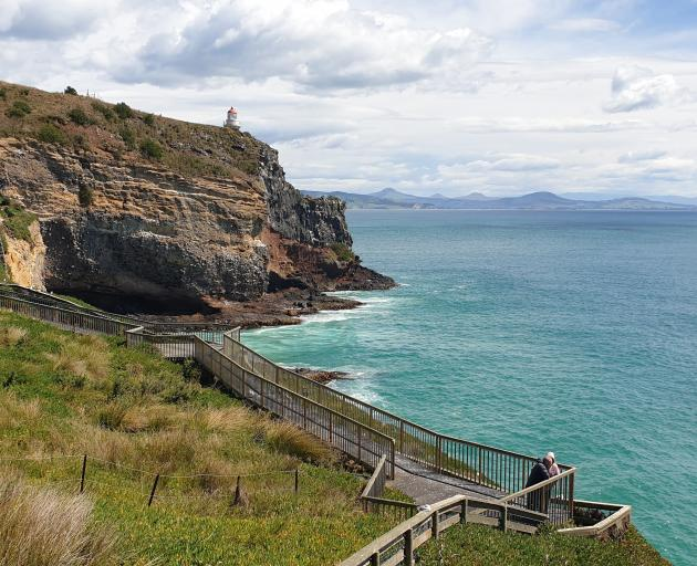 The clifftop viewing area at Taiaroa Head. PHOTOS: CLARE FRASER