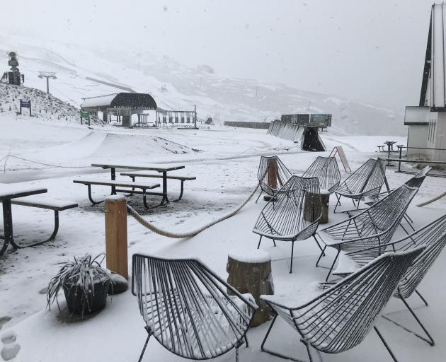 Cardrona Alpine Resort summer staff arrived at work yesterday morning to find 8cm of snow on the...