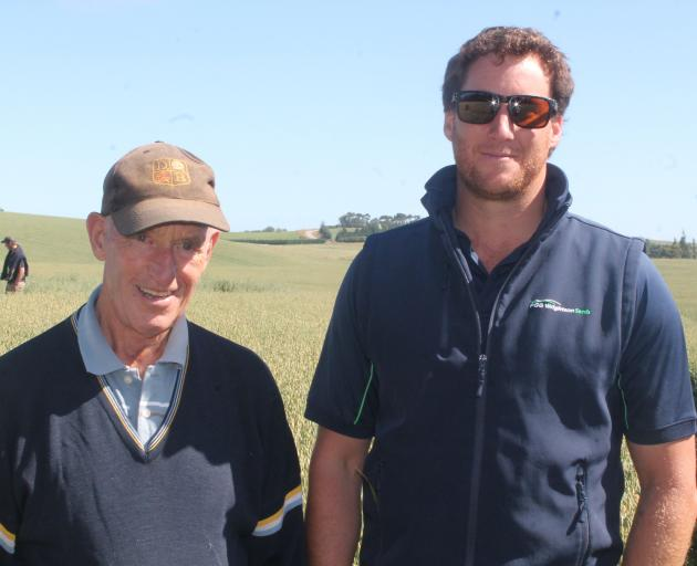 Otama farmer Mike Solari and PGGWrightson's Nick Hishon inspect an oat field. PHOTO: FIONA ELLIS