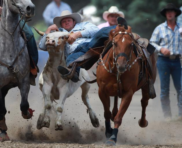 Greg Lamb in action during the open steer wrestling at the Millers Flat rodeo in 2011. PHOTO:...