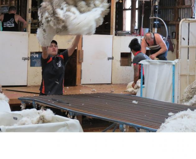 Woolhandlers are in short supply at the moment, but some southern contractors are employing the...