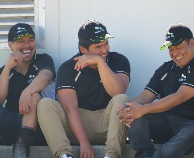 River Terrace Dairy staff Roel, Jessie and Randy having a laugh during the Open Farms event.