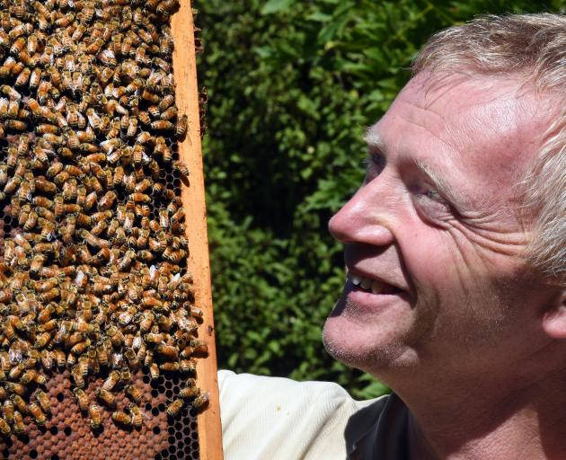 Otto Hyink with one of 21 hives in a study to test identifying plants in the city from pollen...