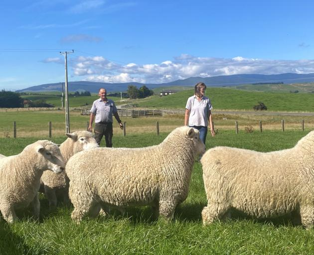 Western Southland farmers Dean and Fiona Addenbrooke at home with some of their Romney rams....