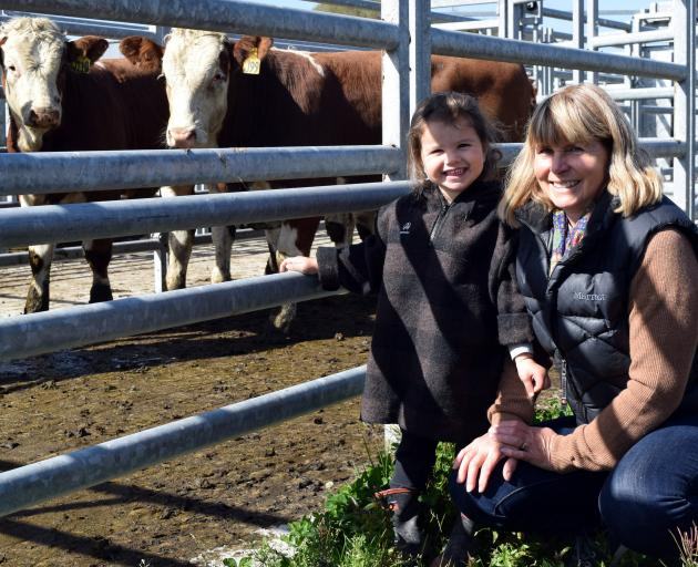 Beresford Farms owner Steph Burgess, of Puketiro, inspects a pen of her Simmental steers with her...