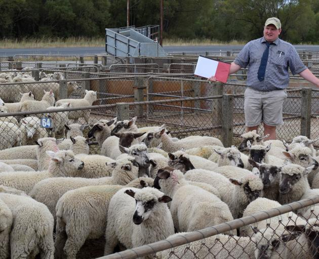 PGG Wrightson agent Russell Maloney auctions a flock of lambs, owned by Aramoana farmer Brian...