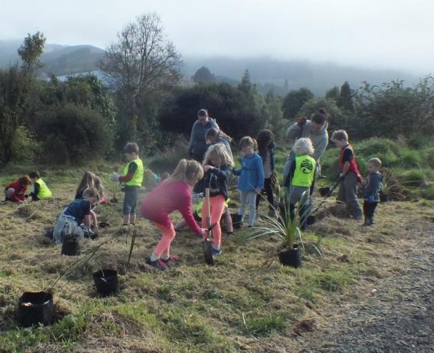 Sawyers Bay School pupils and Student Volunteer Army members get stuck in to riparian planting of...