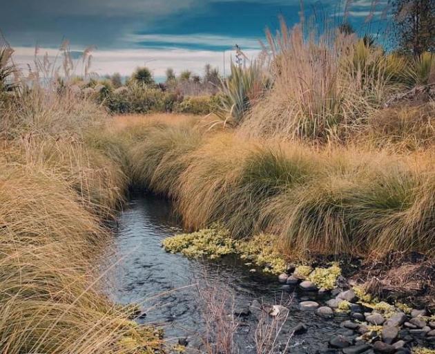 Kaputone Creek may be officially changed to Kā Pūtahi. Photo: Newsline