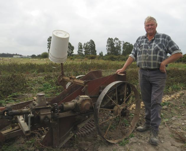 The potato digger is 70 to 80 years old and was a horse-drawn model converted to a power take-off.