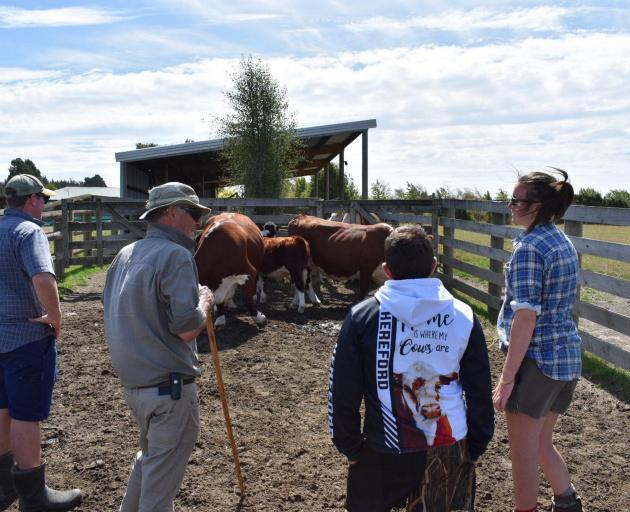 Culverden farmer Rob Burrows shares his knowledge with New Zealand Hereford Youth members. PHOTOS...