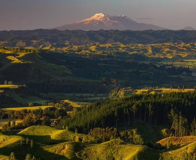 The view towards Ruapehu from Rangiwahia. Photo: Mike Yardley.