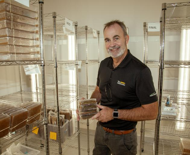 Mark Shaw in the seedling growth room, part of a process that can take a decade before a sample...
