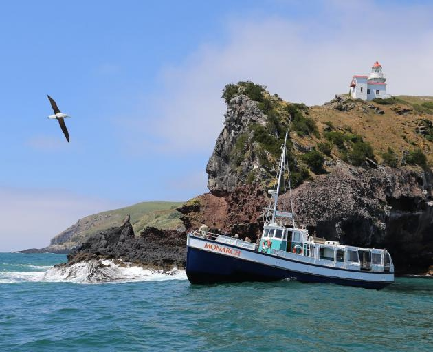 Monarch Cruises and Tours are among local tourism businesses who are feeling positive about the...