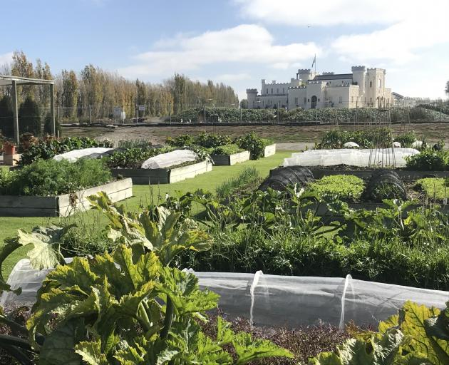 Raised beds at Riverstone Kitchen, with Dot's Castle in the background. PHOTOS: GILLIAN VINE