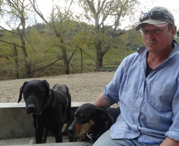Shannon Flett has huntaways Drax (left) and Dora ready to compete at the South Island and New...