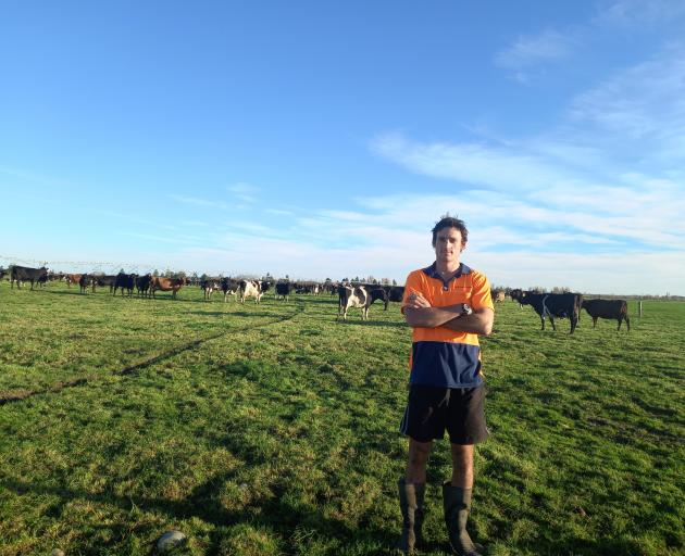 Mattes Groenendijk has had a busy first season as a farm assistant working for Ngai Tahu Farms,...