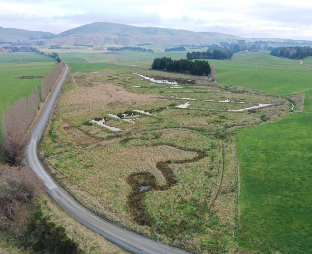 The community-led Waipahi Wetland project, in West Otago. PHOTO: SHANE BOCOCK/SUPPLIED