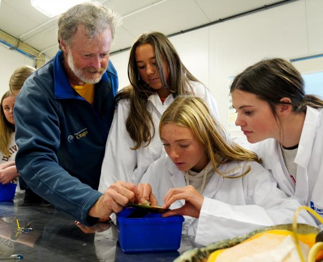 Learning about shellfish during a visit to Cawthron Institute's aquaculture park in Nelson are ...