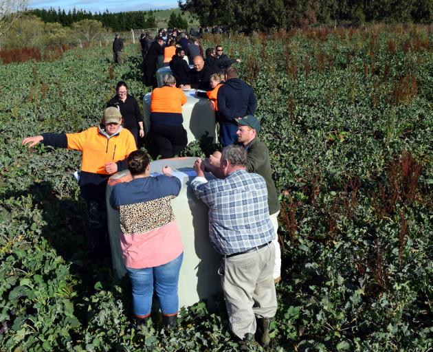 Farmers design a winter grazing plan for a swede paddock at the wintering field day. PHOTOS:...