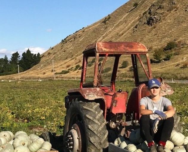 Steph Peirce works on her father's pumpkin path. Photo: Supplied