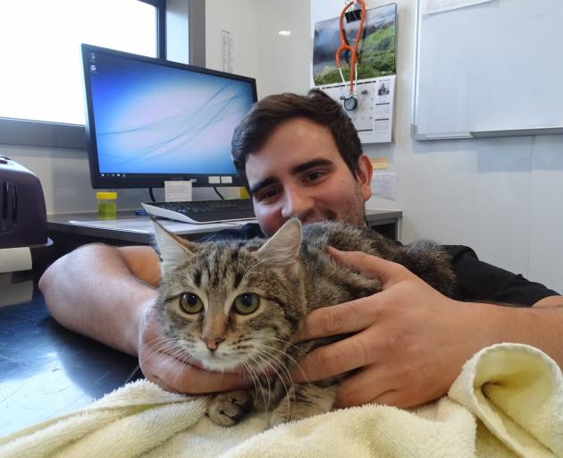 Fire the kitten with Vetlife Wanaka vet John Neskudla. The brown tabby was rescued by Clyde...
