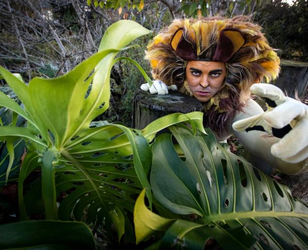 Papas says rehearsal for his role as Alex the Lion with a 4-month-old baby at home has been quite...
