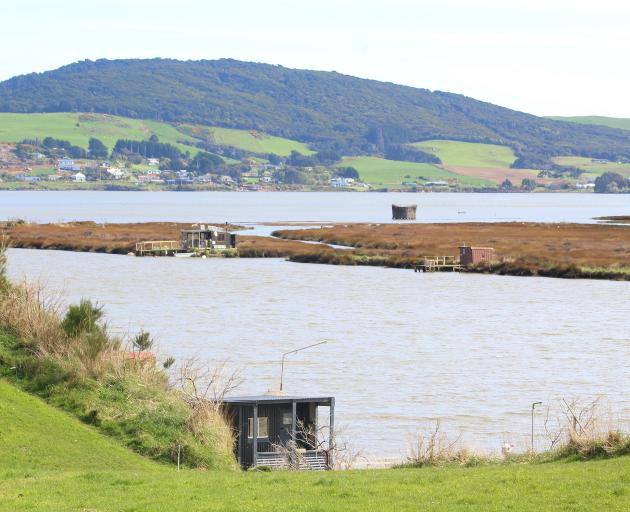 There are around 660 whitebait stands in Southland, several on the Aparima River.