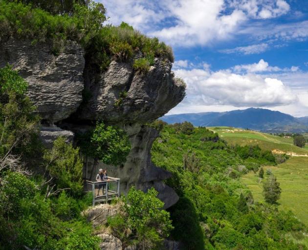 The Grove Scenic Reserve viewing platform. PHOTO: NELSON TASMAN NZ / OLIVER WEBER