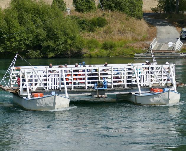 The 125-year-old Tuapeka Mouth punt carries visitors across the Clutha River at the recent...
