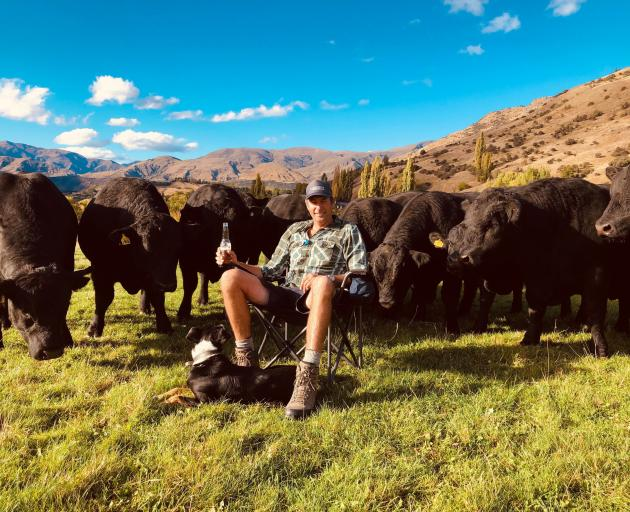 Mike Smith and bulls. PHOTO: SUPPLIED