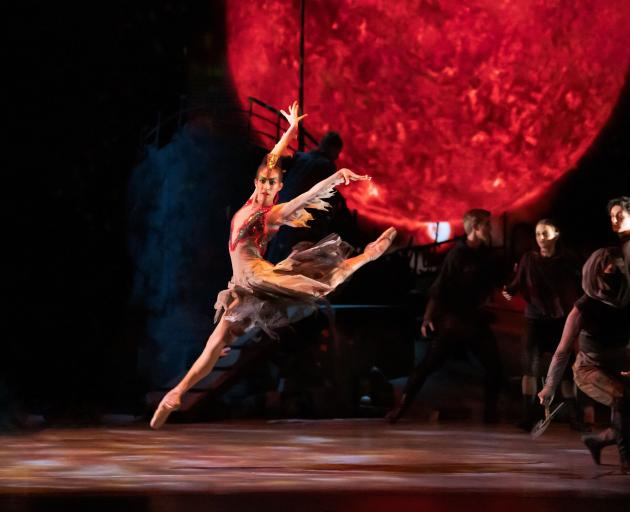 Ana Gallardo Lobaina performs as the Firebird in the Royal New Zealand Ballet production of the...