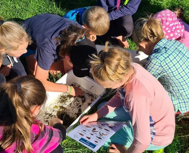 Children inspect aquatic macroinvertebrates as part of a recent Pourakino Catchment Conservation...