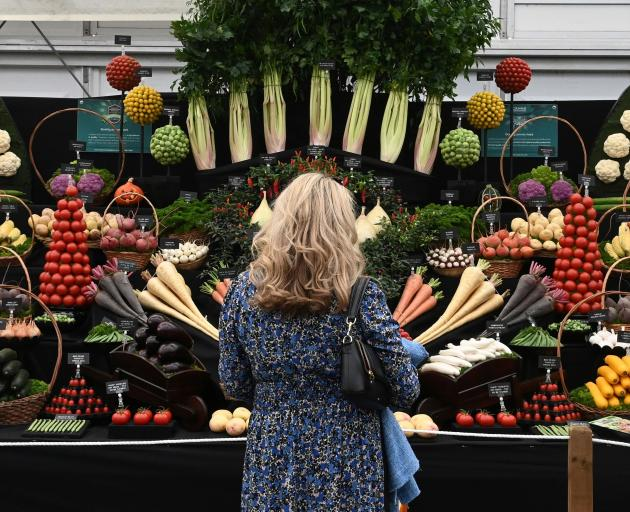 A woman admires the vegetables on display at this year's show.