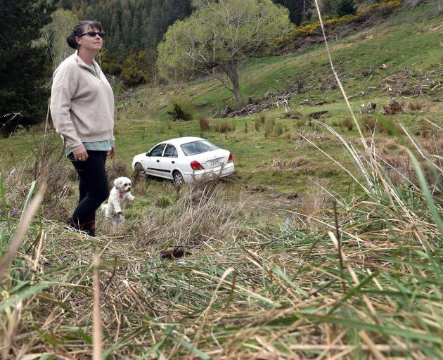 Nicki Powell, of Mosgiel, with dog Lily, surveys the damage after a car crashed into her property...