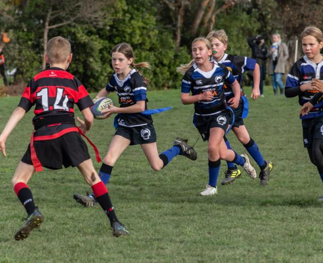 Sumner Rugby Club's under 10/11 Rippa team, the Tiger Sharks, came away undefeated this season....
