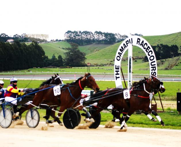 Henry Hubert (No 8), driven by Tim Williams, prevails in the feature Hannon Memorial Free-For All...
