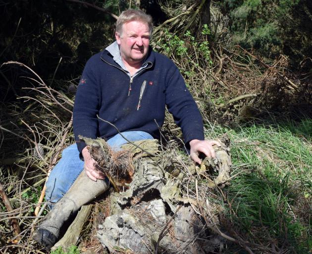 Sheep and beef farmer Stephen Jack sits among fallen trees and branches in a forestry block in...