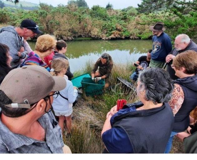 Members of the Hawksbury Lagoon/Matainaka Society gather during a project to restore habitat at...