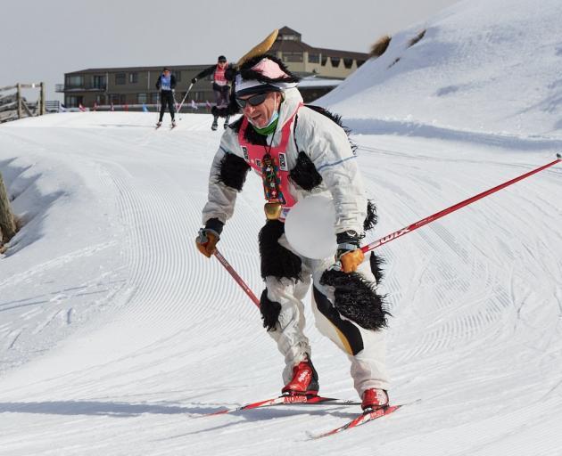 Steve Gurney tears around the Snow Farm in the Merino Muster celebration on Saturday. PHOTO:...