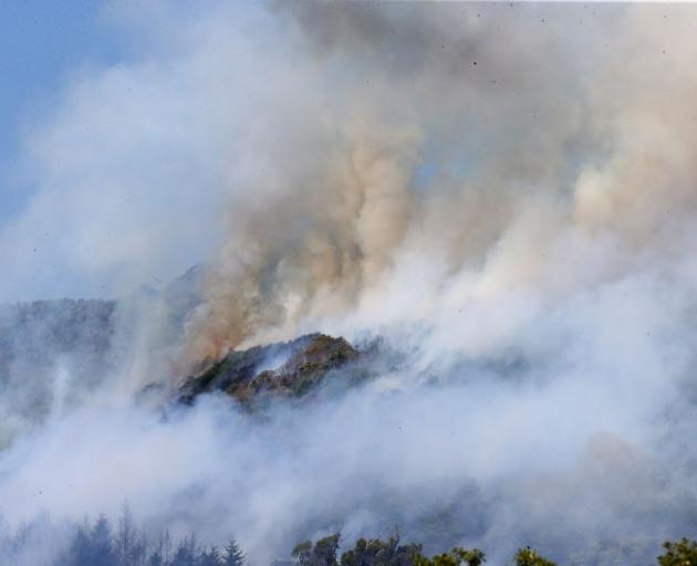 It has been a grim, gritty week in the Nelson region as the ongoing fires have cast a literal and...