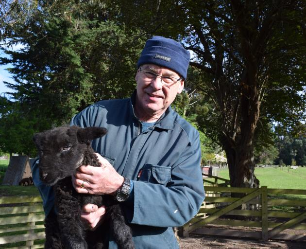 Black and Coloured Sheep Breeders' Association Silverpeaks branch president Phillip Craigie with...
