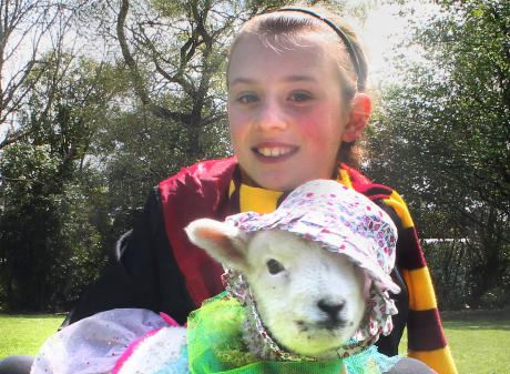 """Thornbury Primary School pupil Talia Raines (10) and her """"baby'' pet lamb Louis at the school's pet day yesterday."""