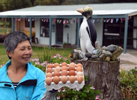 Surat Bay Lodge operator Esther Johnson's yellow-eyed penguin statue casts an envious eye over...