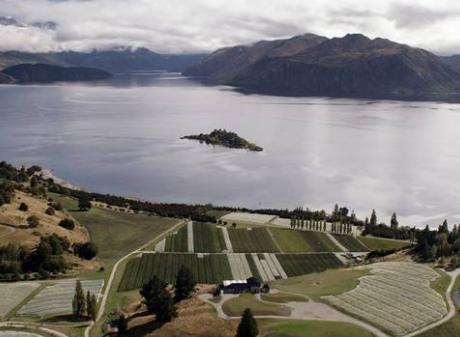 Rippon vineyard on the shores of Lake Wanaka. Photo: NZ Herald/File