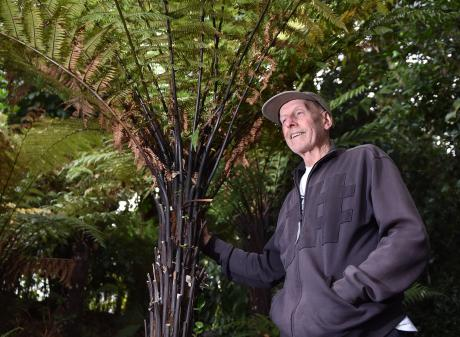Port Chalmers artist Russell Moses has a soft spot for ponga. PHOTO: GREGOR RICHARDSON