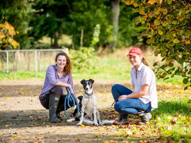 Phoebe Cant and Paige McNabb looking after the dogs on campus.