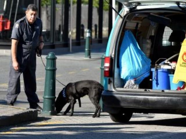 Police and a sniffer dog check the area between Toitu Otago Settlers Museum and the Dunedin Railway Station this morning. The Royal couple will visit the museum this afternoon. Photo Gregor Richardson