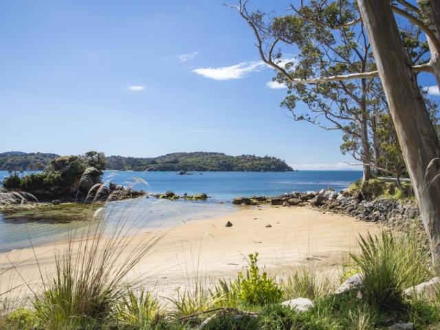 Visit Stewart Island with Real Journeys this summer. PHOTO: REAL JOURNEYS